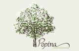 פופינה - מסעדות במרכז